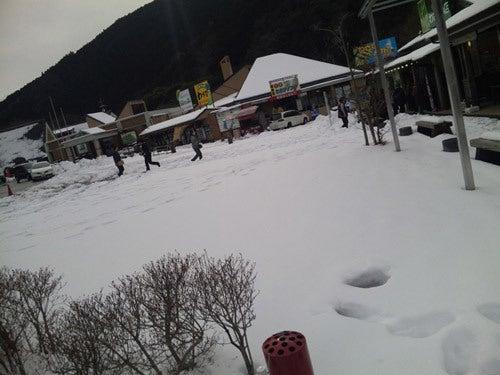 クリームソーダ楽天市場店 *ばぶ吉のブログ*