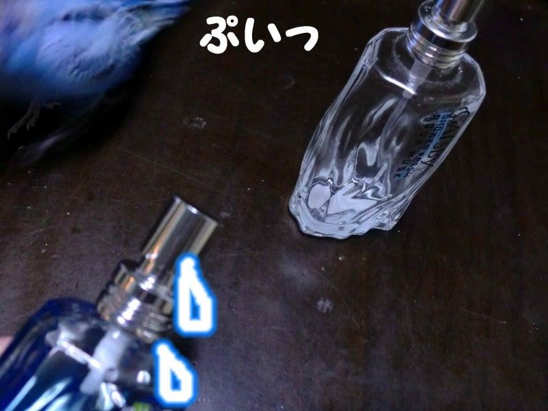 ***れんちゃんnote*** -似てるけど!ちが~うっ!!