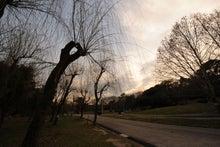 緑地公園6