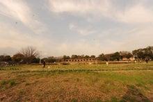 緑地公園12