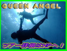 Cancun Diving with Queen Angel                        ~カンクン ダイビング~