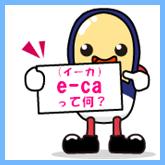 e-caとは