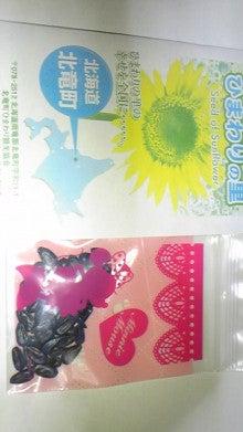 さつき(Satsuki)のブログ-DVC00019.jpg