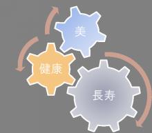 【公式】メディカルエイジング鍵谷佳陽子社長のブログ