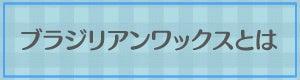 felicidadeのHappy Life☆