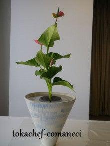 パンダさんのチョコレート-ikebana