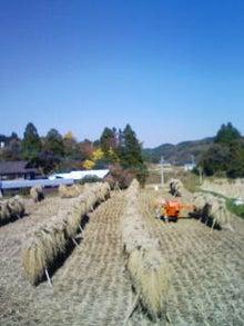 ちよみのブログ-201111261219.jpg