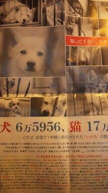 岡本夏生オフィシャルブログ「人生ガチンコすぎるわよ!」Powered by Ameba-DVC00641.jpg
