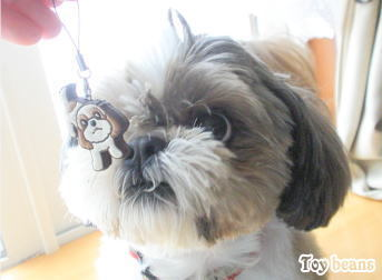 Toy Beans もんぺ犬の大冒険