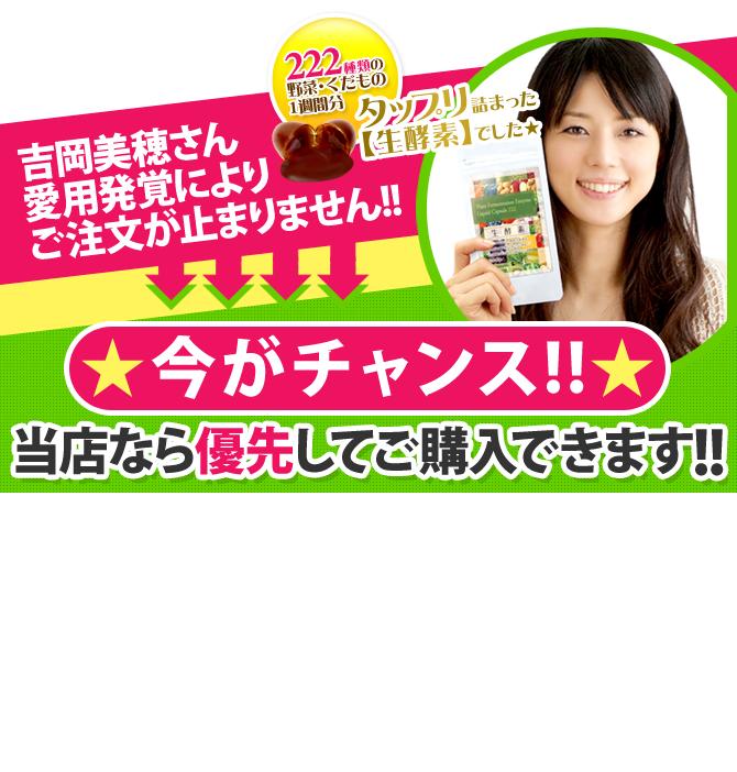 生酵素ダイエットサプリメント (222種の野菜配合) 楽天最安値&口コミ