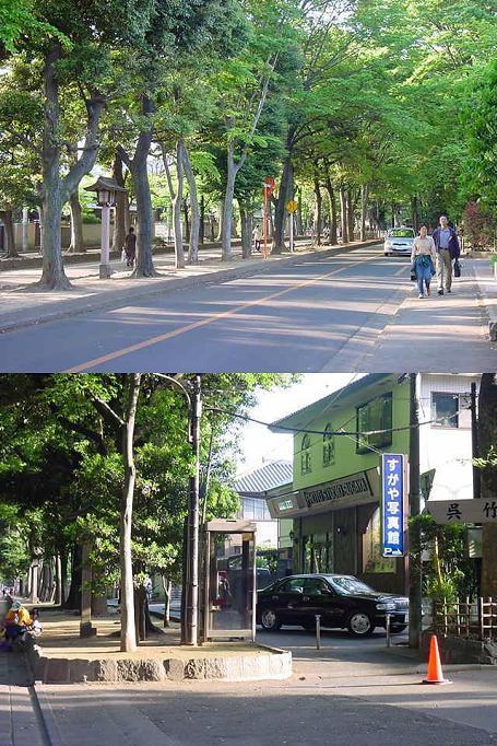 街や交通網の盛衰を記録する....警「美」報 告 書 ☆彡   ▼CAMMIYA-大宮050504153