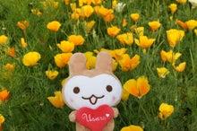 うさるさんブログ-120321