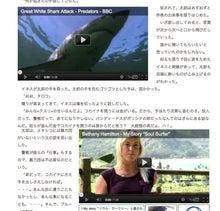 ソウル・サーフィン-2007 巨大鮫ブルーノ
