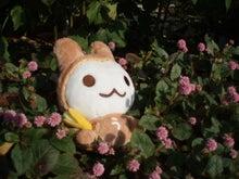 うさるさんブログ-120323