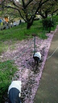 凛と空に咲く-2012031914200000.jpg