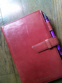 オカメインコのももちゃんと花教室と旅日記-120323_083555.jpg