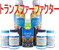 マダム麗和(Yofa)@4Lifeトランスファーファクター  免疫力 健康美容サプリメント