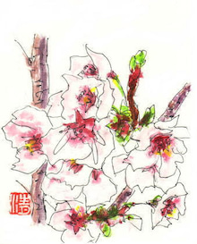 広島爺婆 絵手紙 似顔絵 ブログ