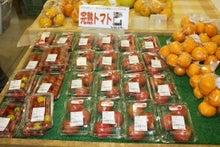 九州産 長崎産 鈴田峠農園 安心安全の直売所 米、野菜、豚肉、卵、鶏肉、牛肉、海産物、産地直送、通販、大村市 野鳥の森レストラン-完熟トマト