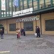 高校野球見に行く。