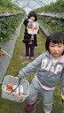 我が家  たぬき村-201203251238000.jpg
