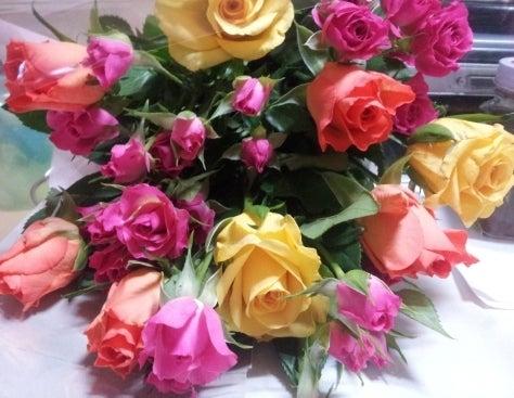 N o r i t a k a 's     D i a r y-roses01