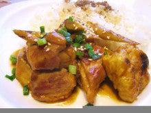 $chika_no_mori-鶏肉とごぼう