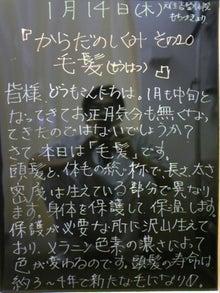 $もとすみ日記-毛髪