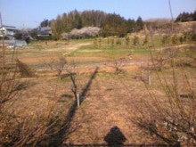 ☆蘭ラン日記☆ -2012032807320000.jpg