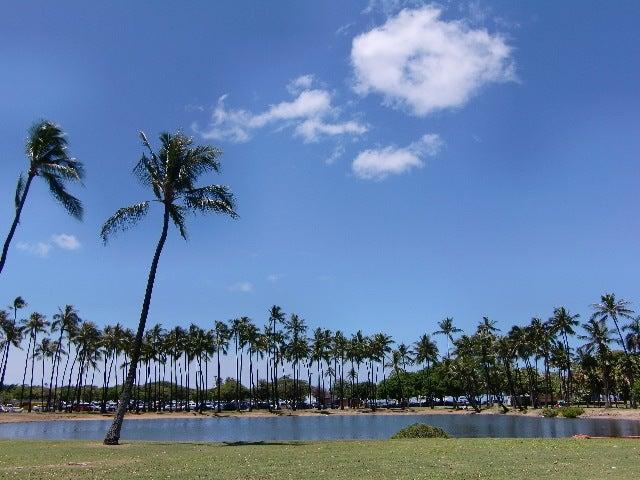 Hawaii 発 カサブランカの How to enjoy Life