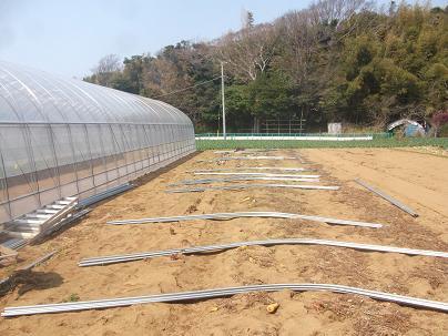 農業のトータルコーディネータ  イノウエ農商事のブログ-03312
