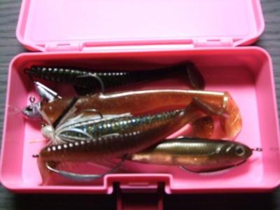 一魚専心-042