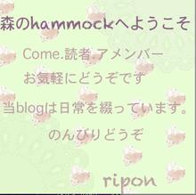 $*森のhammock*