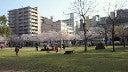 我が家  たぬき村-201204011646000.jpg