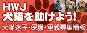 HWJ☆犬猫を助けよう!迷子・保護・里親募集