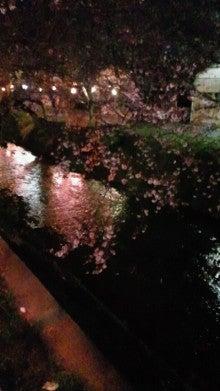 凛と空に咲く-2012040120470000.jpg