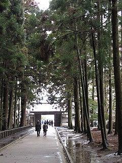 晴れのち曇り時々Ameブロ-瑞巌寺参道
