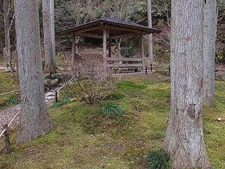 晴れのち曇り時々Ameブロ-禅林瞑想の庭(円通院)