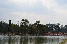 まさやんのブログ-天王川公園3