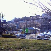 桜、春、満月