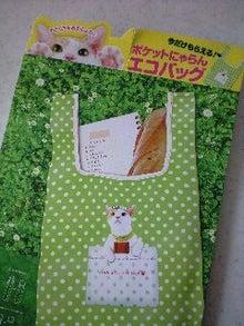 ずれずれブログ…湘南で猫と暮らせば…-120407_1426~0001.jpg