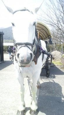 野蒜山荘スタッフあいらのブログ-2012040812510000.jpg