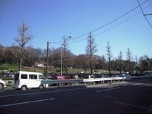 マンション屋さんの溜め息-sakura2