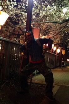 マーダルのブログ-桜2