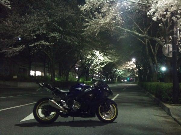 ハヤブサ飼育日記 ~GSX1300R~