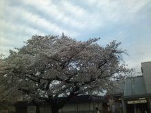 日本酒を、『学び』に-SN3G0481_0001.JPG