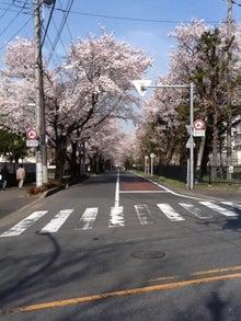 和光市長 松本たけひろの「持続可能な改革」日記-国際高校通り