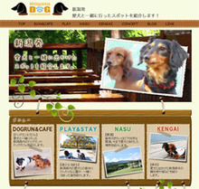 Niigata DOG Information