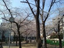 大塚ではたらくクリックマのブログ-大塚台公園1