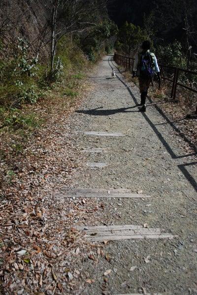 アクセル☆ゴーゴー-廃線跡